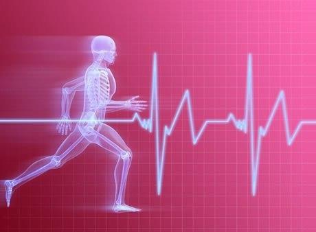 бег для сердечно-сосудистой системы