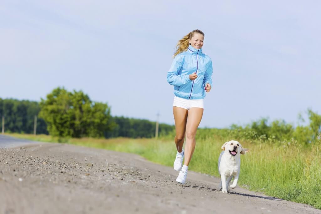 собаки для бега порода