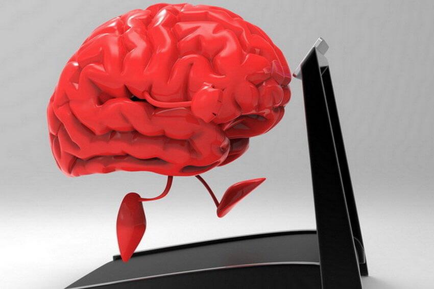 головной мозг и бег
