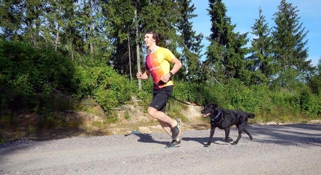 как научить собаку бегать