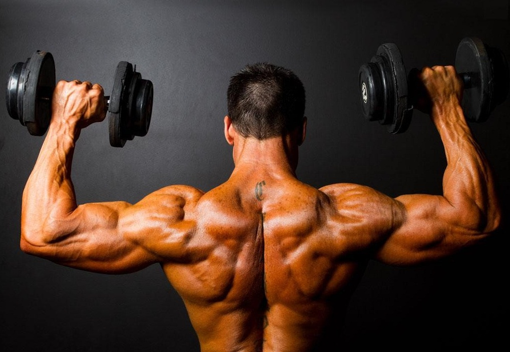 витамины для роста мышц в аптеке