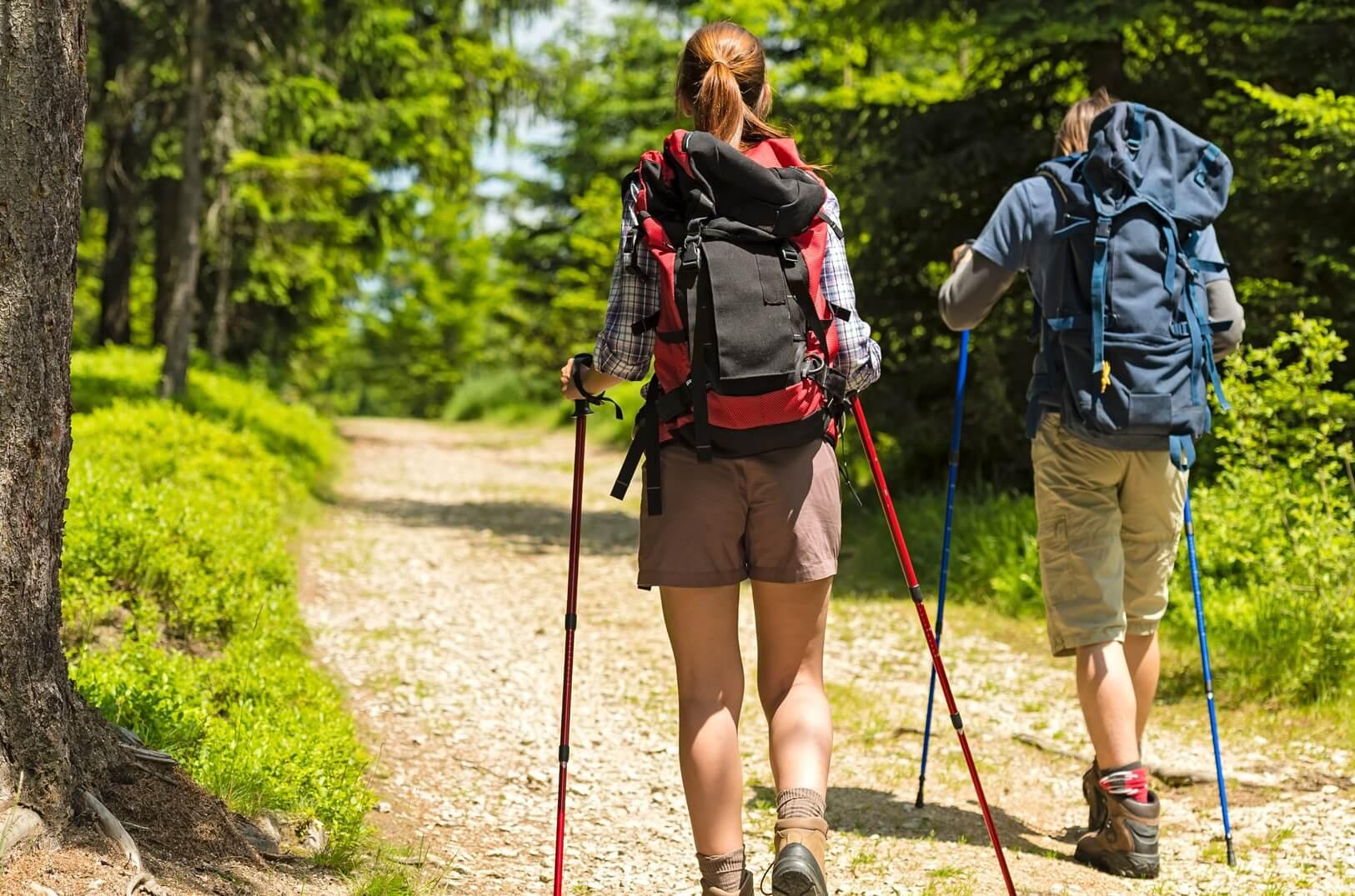 расход калорий скандинавская ходьба