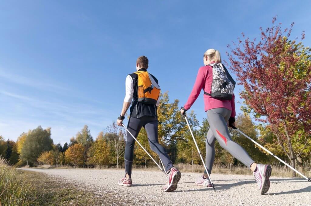норвежская ходьба с палками